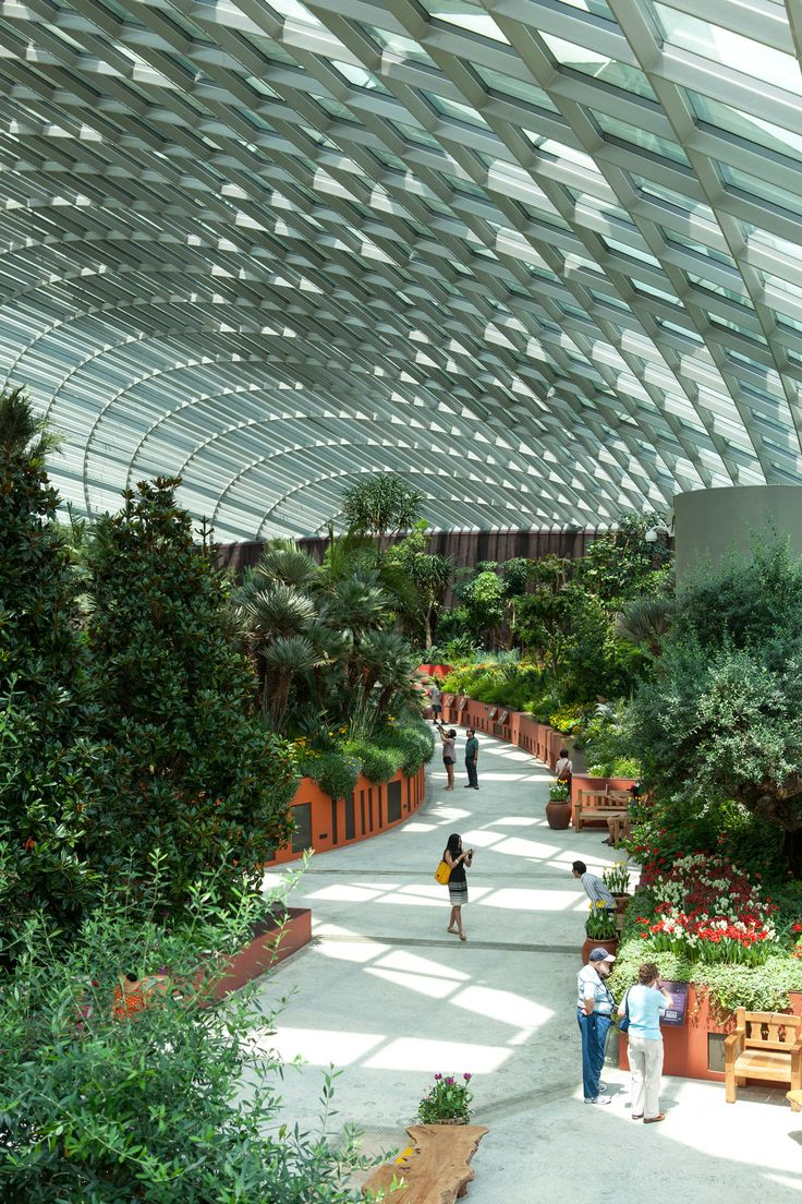 Gardens by the Bay - Conservatories. Landscape architecture by Bath-based landscape architects Grant Associates.
