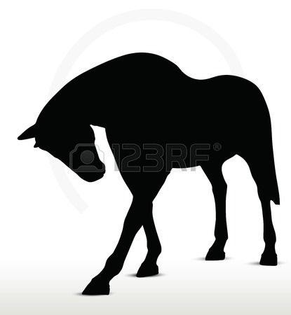 Pferd Silhouette in stehender Position noch Stockfoto - 29208561