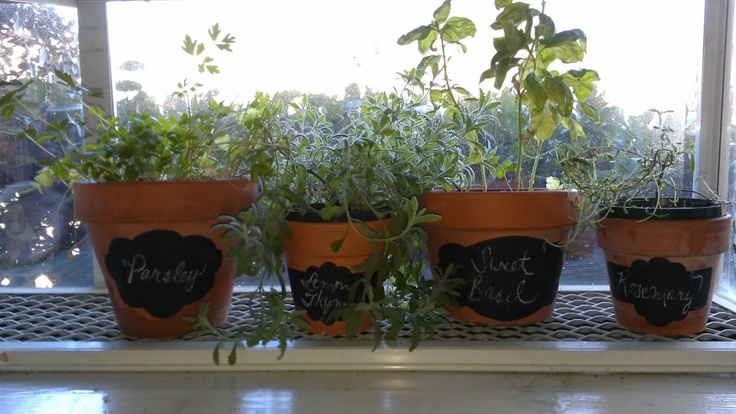 My pinterest project for my kitchen herbs!: Chalkpaint, Pinterest Projects, Diy Templates, Kitchen Herbs, Pinterest Herbs, Herbs Gardens, Chalk Paintings,  Flowerpot, Kitchens Herbs