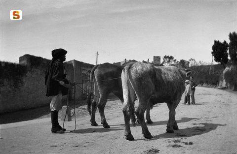 Antonio Ballero,  Il rientro dalla campagna, 1915