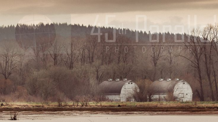 The Twin Barns of Nisqually