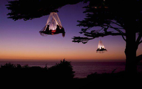 Кемпинг на деревьях, Штат Калифорния, США