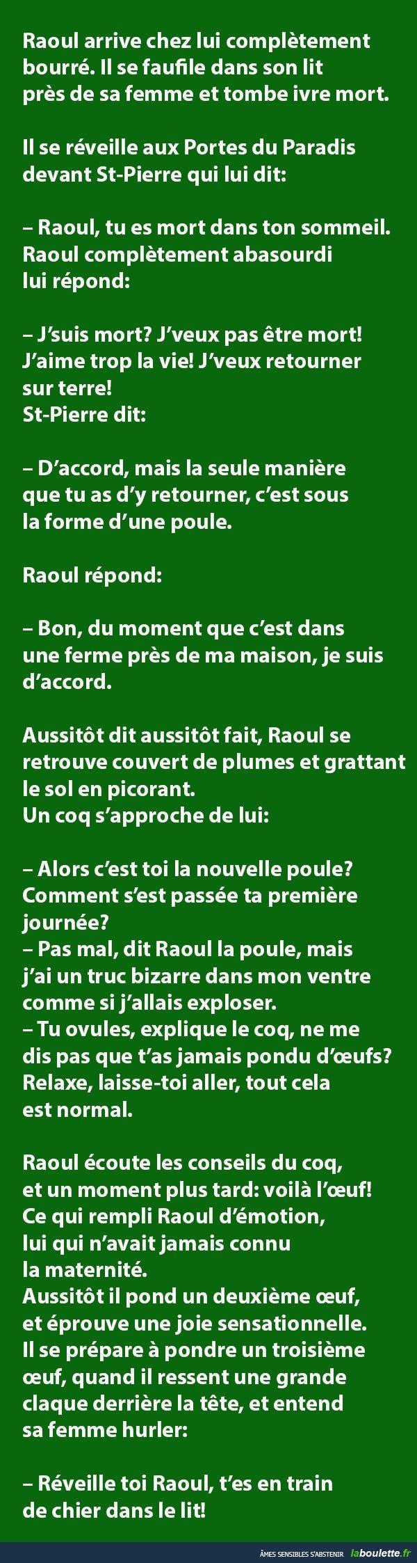 Raoul arrive chez lui complètement bourré... | LABOULETTE.fr - Les meilleures images du net!