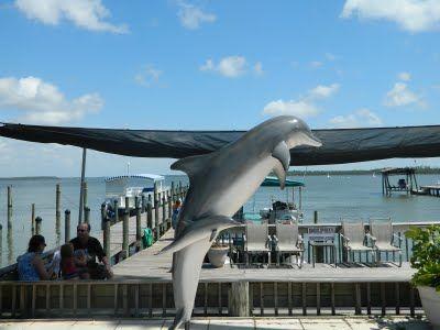 Dolphin Cruise - Orange Beach, Alabama
