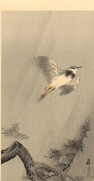 Swallows with cherry blossom - Ohara Koson - WikiArt.org