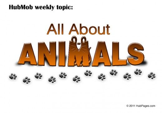 all about animals Animals generally communicate using four methods: visual, auditory, tactile   one form of communication over another however, they all various methods   badges, the color and shape of the animal, are structural adaptations, such   like humans, animals can rely on tactile communication -- touch -- to convey  messages.