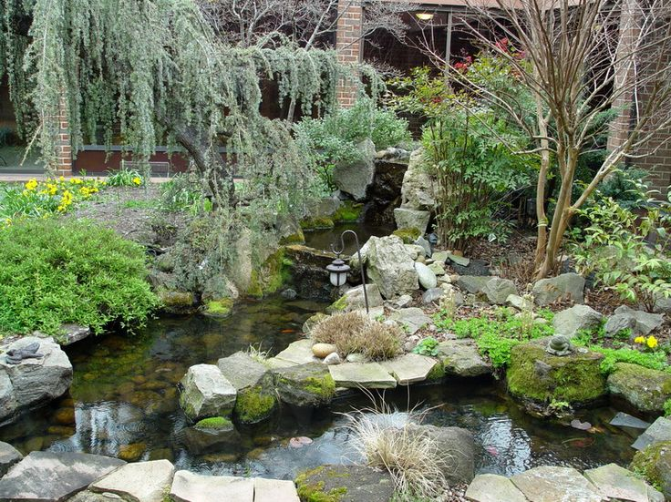 16 best Water Gardens images on Pinterest Backyard ponds