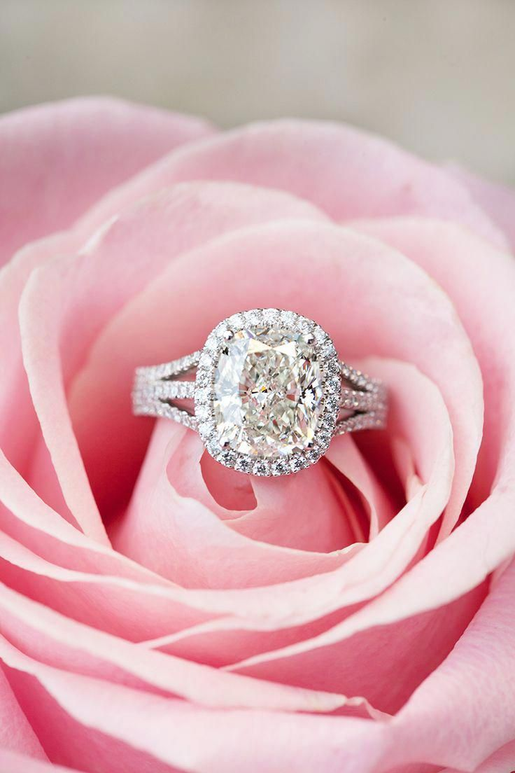 Engagement Rings and Flowers: 15 Perfect Shots ...
