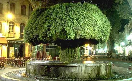 Fountaine Moussue, Salon de Provence, France