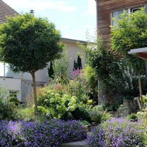 Ein Schweizer Garten: Heimkommen...