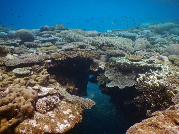 les 49 meilleures images du tableau la mer sur pinterest
