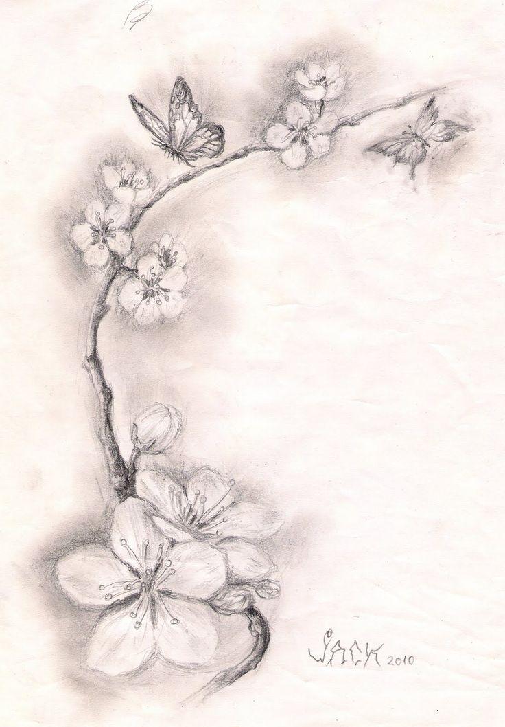 Dracones Tattoo Studio Sketch Cherry Blossoms