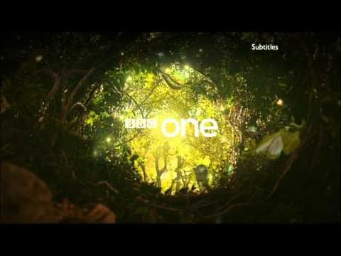 BBC One - Magical Forest Ident 2009.