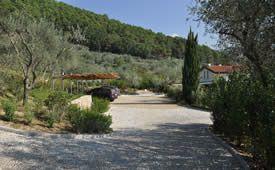 Parco privato con piscina ad Ortonovo.