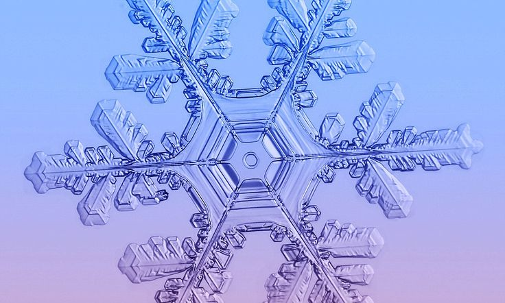 Winter's wonders: Amazing pictures of snowflakes captured in all their stunning symmetry dailymail.co.uk