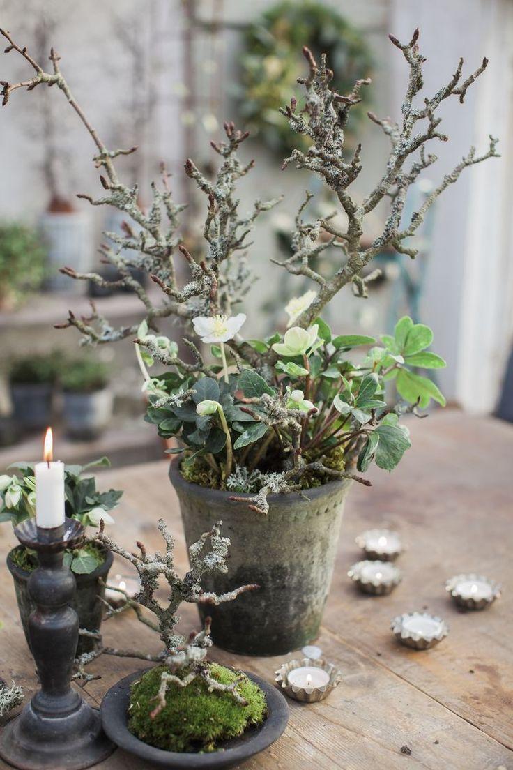 80 Winter Garden Decoration Ideas – Adventszeit
