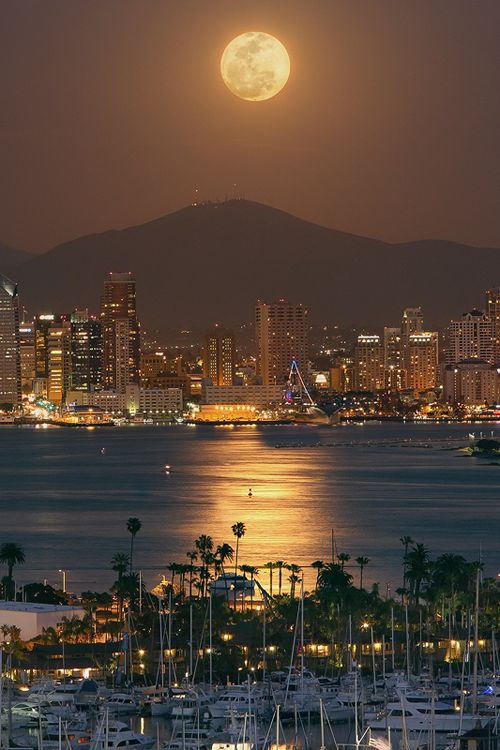 The moon rises over harbor on a serene and peaceful night in San Diego, California, USA