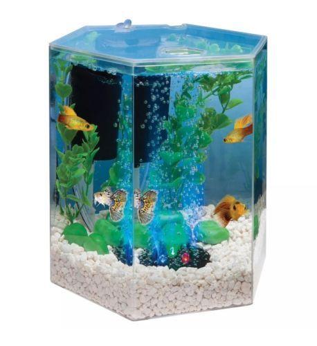 25 best ideas about hexagon fish tank on pinterest fish for 55 gallon hexagon fish tank