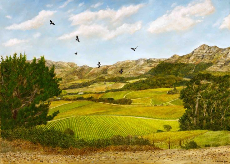View of Klein Constantia and Pied Crows - Oil on Canvas. 52 x 73 cm. Pied Crows playfully swoop over the Constantia Valley above the Klein Constantia vineyards. I painted this on warm Autumn days, trekking a few times up to the top of the hill with my easel while the vineyards changed colour and the wind carried the scent of the sea.