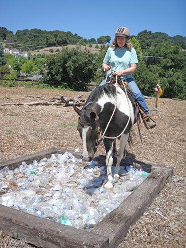Un bac à bouteilles en plastique un bon obstacle pour les chevaux qui ont quelques craintes au niveau des pieds et des jambes mais aussi une bonne façon d'apprendre à gérer les pieds en question ! http://www.mustangs4us.com/Gentling&Training/desensitizing.htm