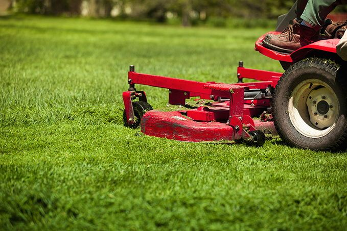 Mowing Wet Grass Here Are The Top 20 Tips To Know Lawn