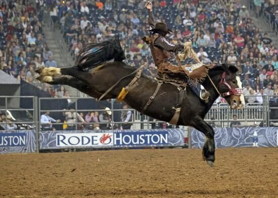 673 Best Let S Rodeo Images On Pinterest Rodeo Rodeo