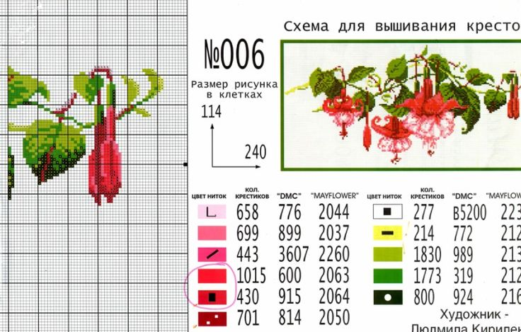 Gallery.ru / Фото #28 - фуксия - irisha-ira