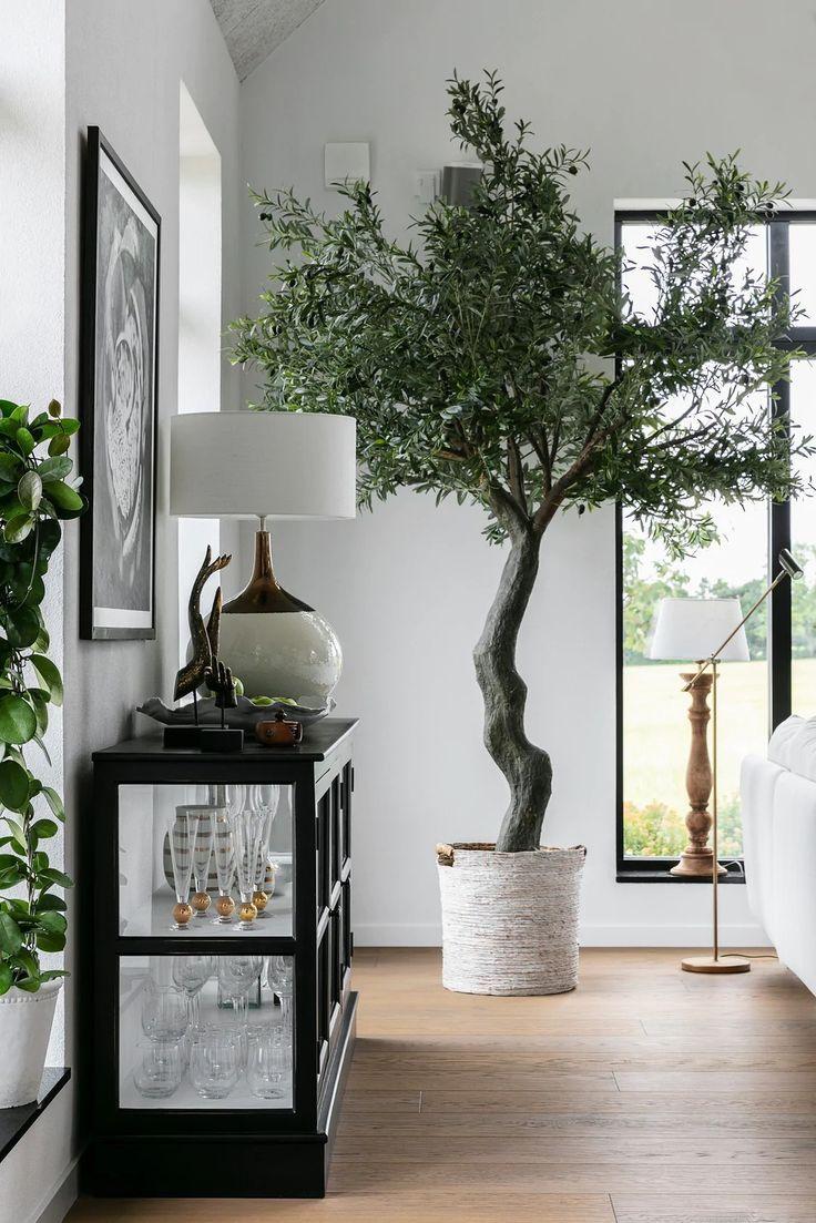 Un Salon Cathedrale Une Piscine Et Des Plantes Dans Une Maison