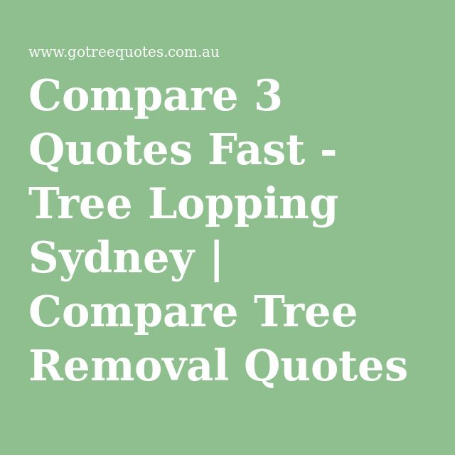 Tree Lopping Sydney | Compare Tree Removal Quotes - Free Service