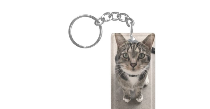 A Cat Keychain