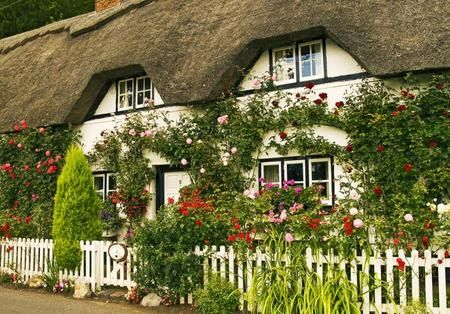 I love all of the flowers on this Irish Cottage with the thatched roof.  I've been to England and these houses are even more beautiful in person.: Cottages Gardens, Country Cottages,  Thatched Roof, English Cottages, Cottage Gardens, English Country, White Picket Fence, Cottages Home, Gardens Cottages