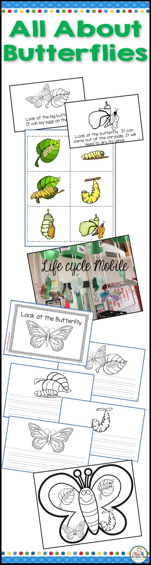 Predownload: All About Butterflies Teach The Butterfly Life Cycle With This Amazing Resource Includes An Sequencing Activities Kindergarten Resources Butterfly Life Cycle [ 2247 x 600 Pixel ]