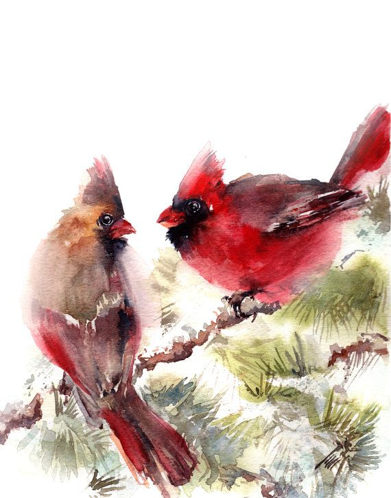 Watercolor Print Bird Print Watercolor Painting by CanotStopPrints