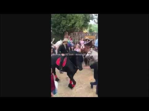 Maluma en la Cabalgata Rural – Región de Oriente - VER VÍDEO -> http://quehubocolombia.com/maluma-en-la-cabalgata-rural-region-de-oriente    Créditos de vídeo a Popular on YouTube – Colombia YouTube channel
