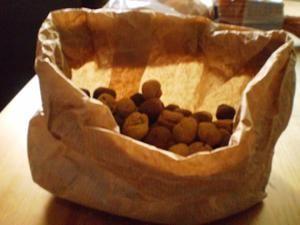 Crocchette per cani fatte in casa