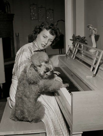 Betty White and her poodle