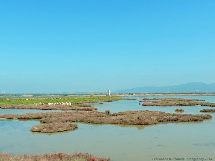 View of the pond Is Solinas (CI - Sardinia) by Francesca Murroni Ph on 500px