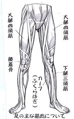 足の描き方1