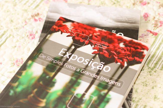 fotografia livros de simples fotos a grandes imagens borboletas na carteira-3