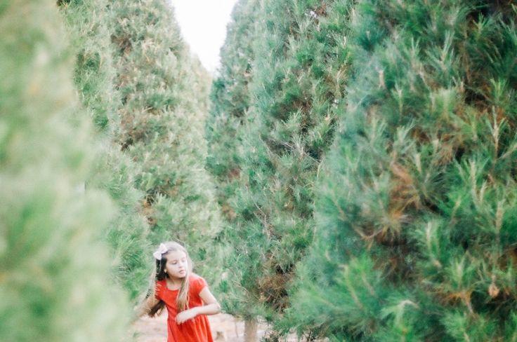Film portrait of girl in Christmas Tree Farm    35mm Kodak Portra 160   nerearobles.com