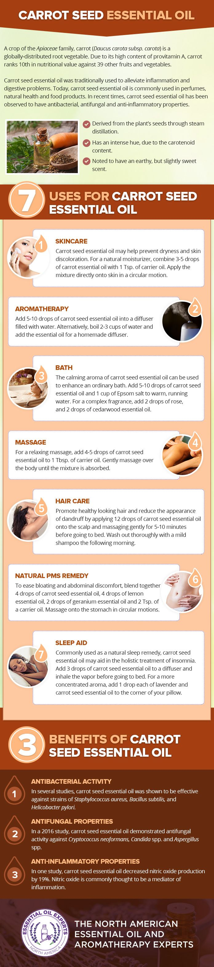Carrot Seed Essential Oil Uses & Benefits
