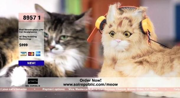 Limited edition headphones for catsHeadphones Design, Limited Editing, Cat Http Cnet Co Nqlzla, Cat Cnet Co Nqlzla, Editing Headphones, Cat Headphones, Appalation Shock, Staff Pick, Loud Laugher