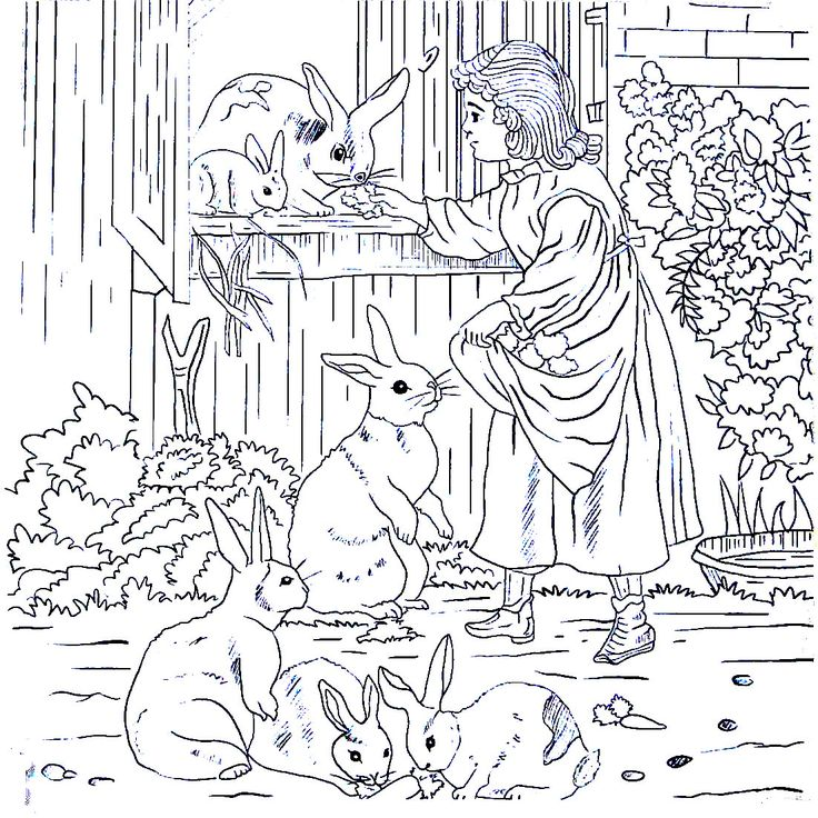 Mejores 38 imágenes de Living in the Country Coloring Book Pages en ...