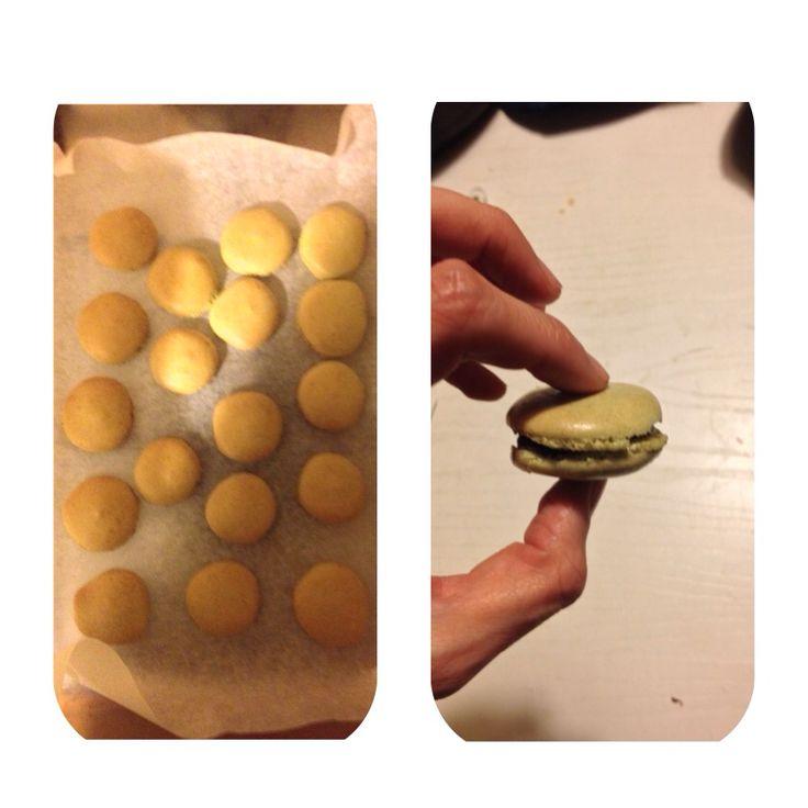 Macarons al tea macha