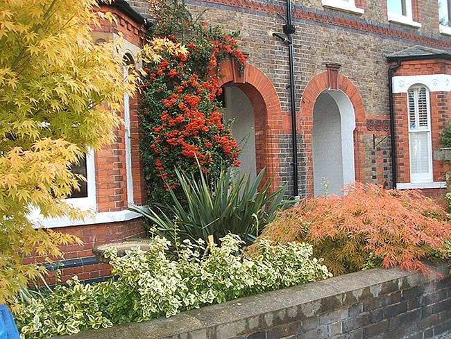 Susie Pritchett Portfolio Front Gardens (With images ...
