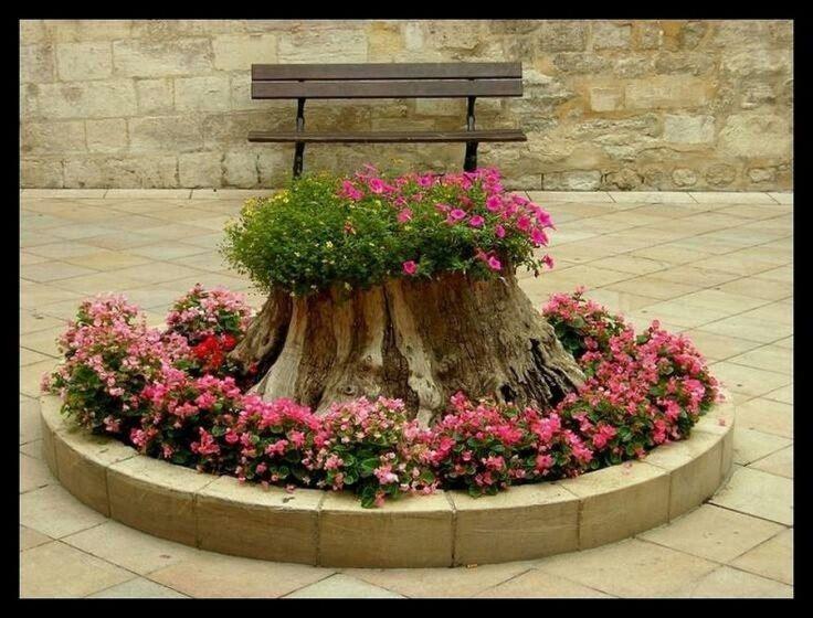 flowerbed baerug stump