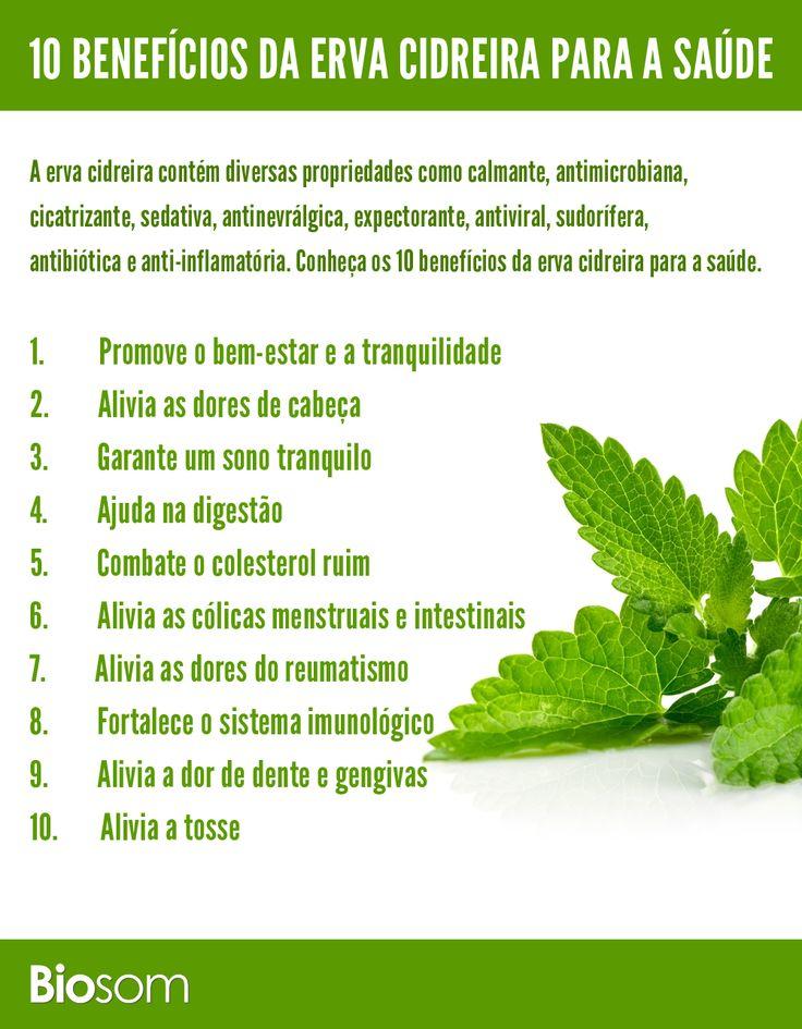 Clique na imagem e veja os 10 benefícios de erva cidreira para a saúde #ervacidreira #saúde #alimentação #alimentaçãosaudavel #saúde #infográfico #bemestar