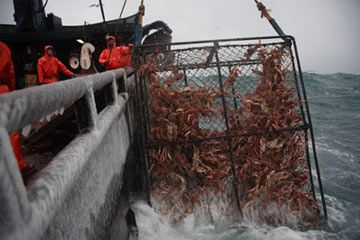 153 best images about commercial fishing on pinterest for Deckhand fishing jobs