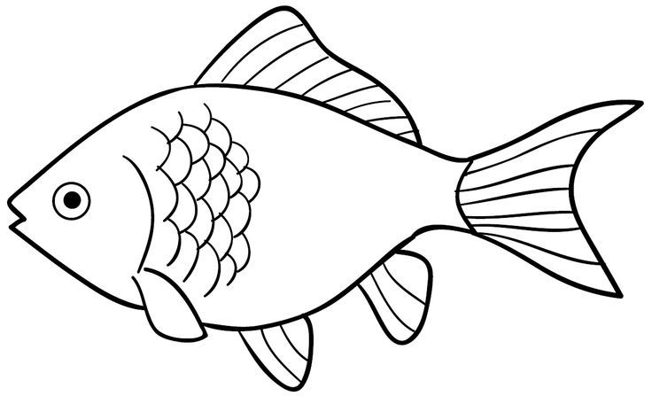 999 Fish Clipart Black And White Free Download Cloud Clipart Fish Clipart Fish Outline Fish Drawings