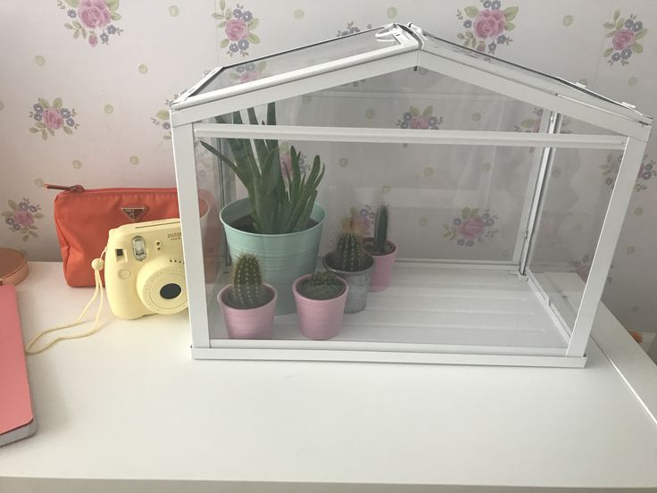 Aloe Vera from Ikea £2.50,the green pot £1, three cacti ( in pink pot) £4.50 with pot , no idea about the other one , green house itself from Ikea £12 ❤️